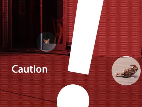 caution2-600x450